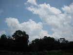 C20090706夏の雲.JPG